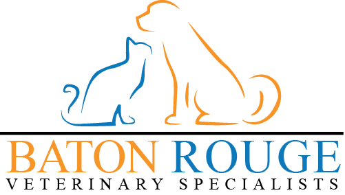 Baton Rouge Veterinary Specialists